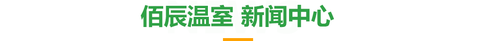 佰辰千赢国际官网-新闻中心